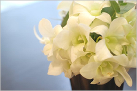 お客様をお迎えする生花