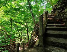 露天風呂までの150段下り階段。