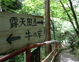 途中、散策路への別れ道