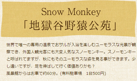 Snow Monkey 「地獄谷野園公苑」