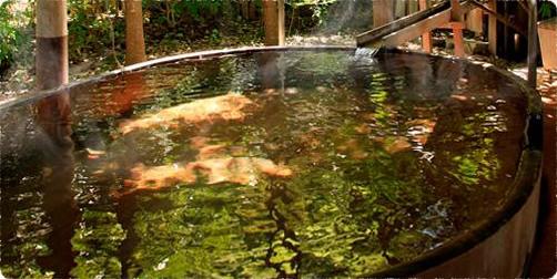 美ヶ原温泉の恵み