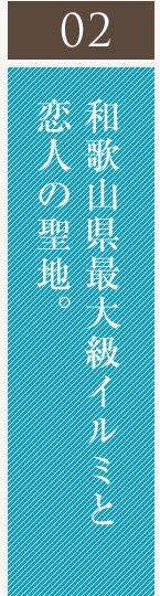 和歌山県最大級イルミと恋人の聖地。