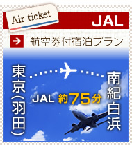 JAL航空券と宿泊セット