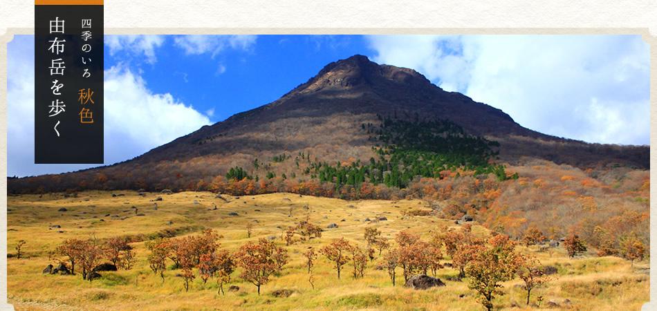 四季のいろ 秋色 由布岳を歩く 紅葉に織りあがる由布岳を歩く