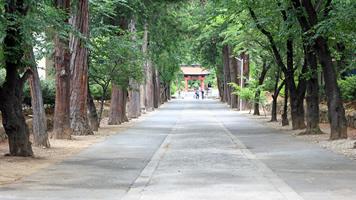 恵林寺への田舎道を歩こう