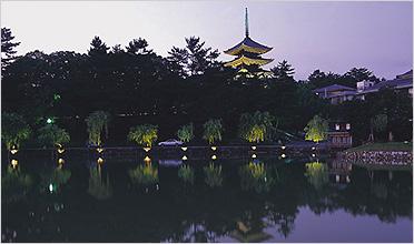 古都奈良の魅力に包まれる、世界遺産の興福寺