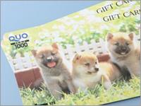 【ホテルグレイスリー新宿開業記念】1000円QUOカードセットプラン♪コンビニ徒歩1分
