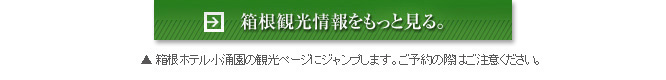 箱根観光情報をもっと見る。