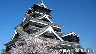 やっぱり定番!熊本城!