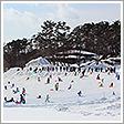 小岩井農場雪祭り