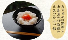 おすすめは新鮮な糸島産の伊都鶏のたまごかけご飯