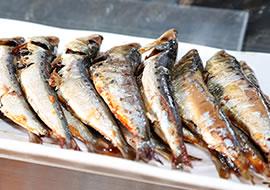 焼き魚(炙り)