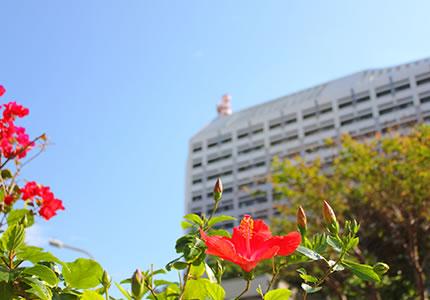 ビジネスに最適な立地。沖縄県庁等官庁街へ徒歩約3分。