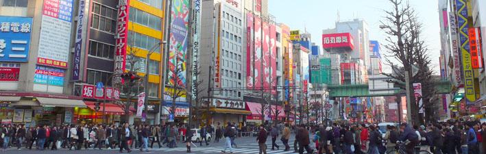 東京観光情報