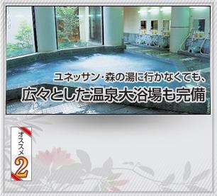 広々とした温泉大浴場も完備