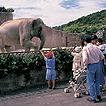 いしだけ動植物園